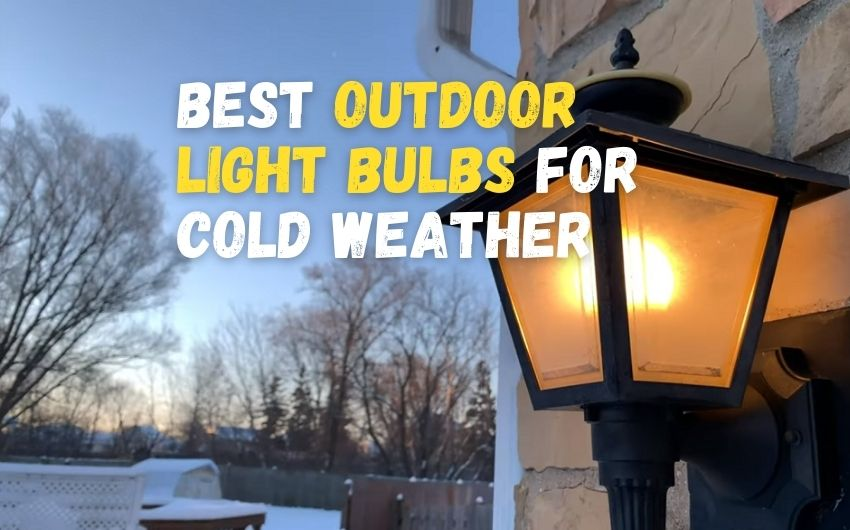best outdoor light bulbs for cold weather
